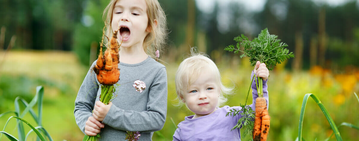 Girls holding carrots in a field